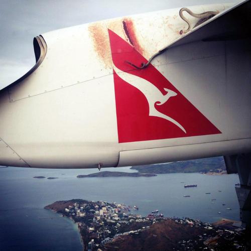 Самолет Quantas поднялся в воздух с «безбилетным» питоном на крыле