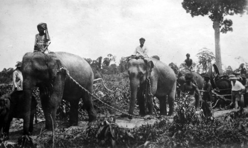 Фото: A History of Phuket and the Surrounding Region