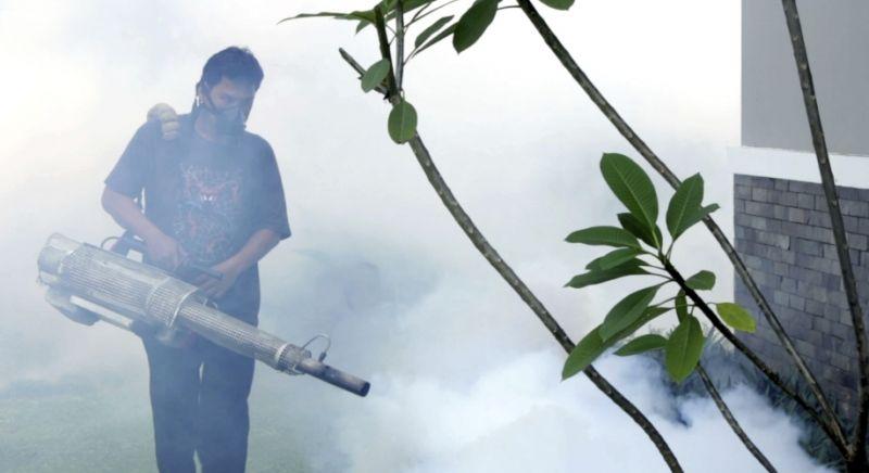Во Вьетнаме резко возросло число заболеваний денге