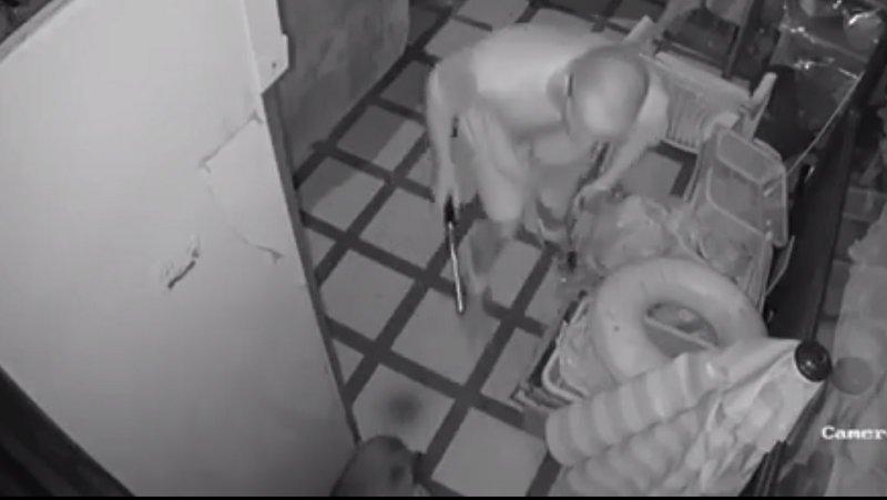 Полиция занялась делом о нападении на уличную собаку в Раваи