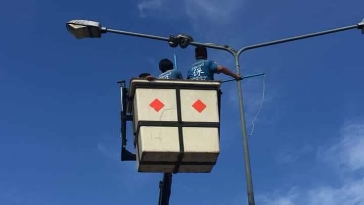 Крупный питон забрался на мачту уличного освещения на шоссе в Краби. Фото: Krabi Pitak Pracha Rescue Foundation