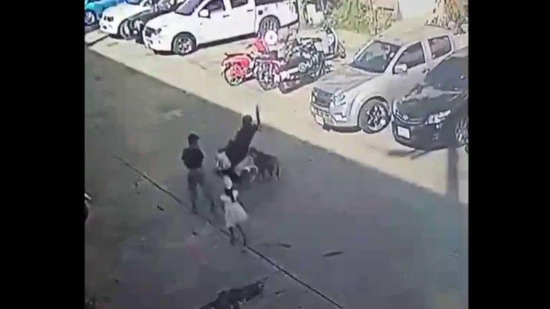 Жительница Пхукета пытается добиться компенсации за перелом, полученный по вине соседской собаки.
