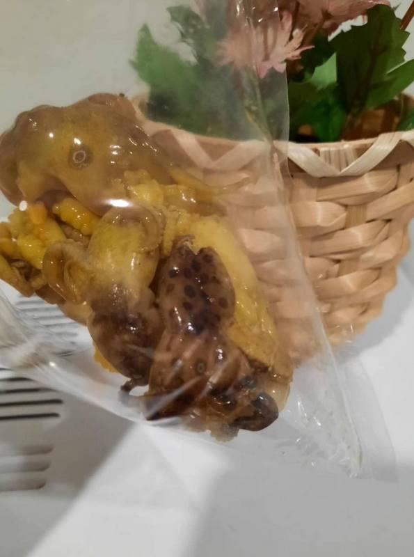 Ядовитого осьминога можно узнать по характерным синим кольцам. Фото: DMCR